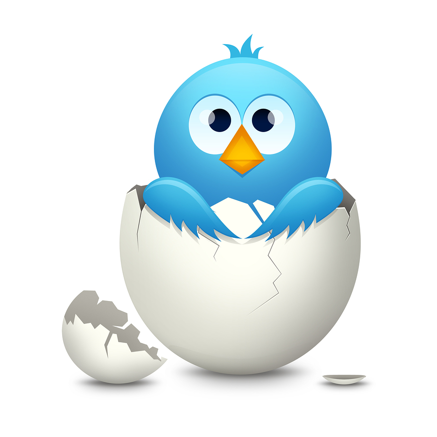 Twitter Survival Tips for the newly hatched